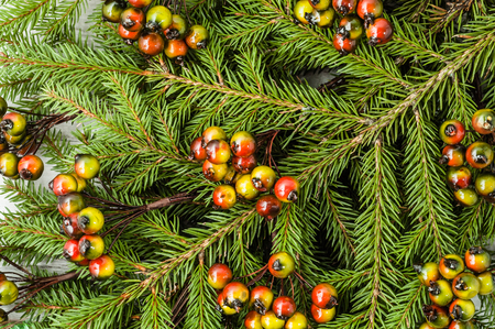 Christmas tree branch, close-up with decoration Stock Photo