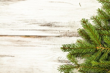 Green spruce, Christmas tree backgrounds on white table.