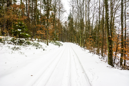 snowcovered: White winter landscape on the rural road in the forest.