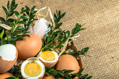 boxwood: Easter eggs in easter basket decorated with boxwood.