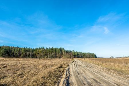 suelo arenoso: Spring rural landscape with farmland and dirt road. Foto de archivo