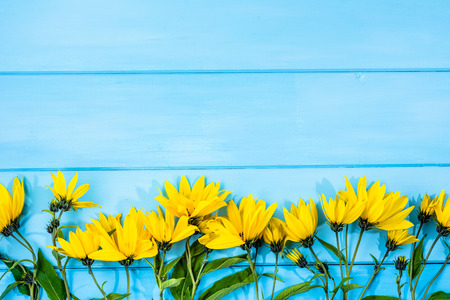 edible plant: Autumn flowers on wooden background. Fall harvest of medicinal plant with yellow flower, edible topinambur.