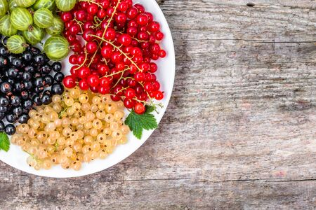 Summer fruits varieties: red currants, white currants and blackcurrants on plate, top view Stock Photo