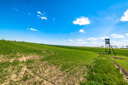 Green field landscape, hunting pulpit and blue sky on the horizon