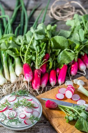 Dietary cottage cheese with radish, vegetarian diet concept Stock Photo