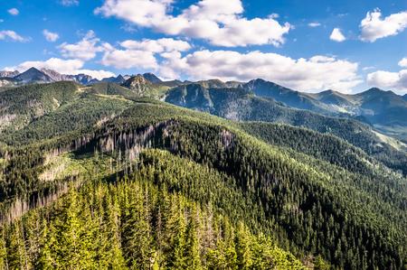 orla: Panorama of mountain range, Tatras Mountains, landscape, Poland