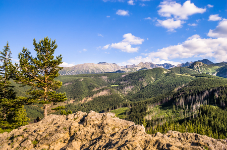 orla: Panoramic of Tatra Mountains, landscape, Poland
