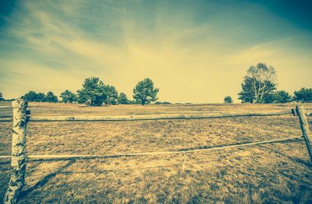 Ranch, fence of field, landscape