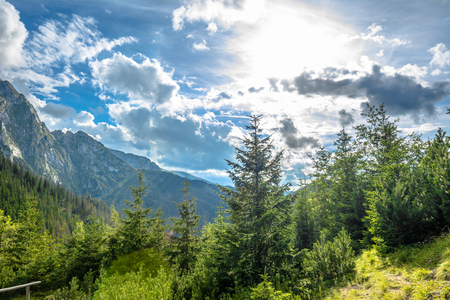 Majestic mountains, view of Tatra Mountains in the summer, landscape, Poland