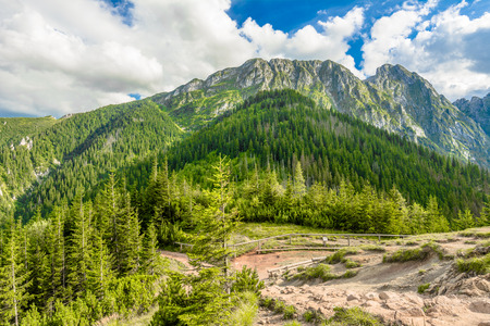View of hiking trail in Tatra Mountains from top of mountain, summer, landscape, Poland