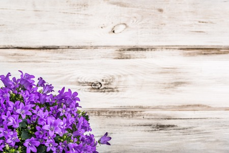 Spring flowers frame on wooden background