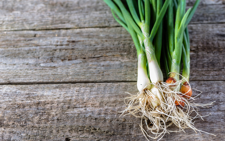 Bunch green onion on wooden table, copy space