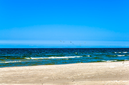 Deserted beach under blue sky, summer vacation, travel background