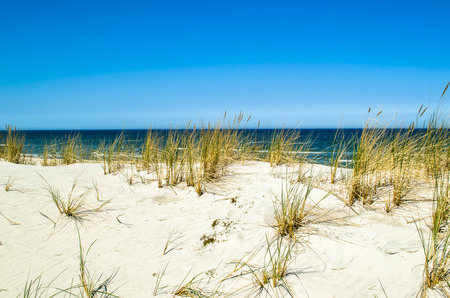 Deserted sandy beach, landscape with dunes and grass under blue sky in the summer Stock Photo