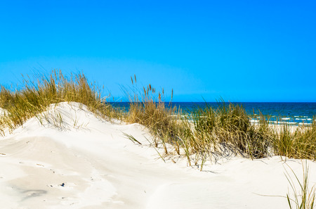 Sand dunes with grass and deserted sandy beach under blue sky, summer vacation, travel background