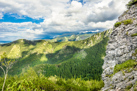 Panorama of mountains in Tatras, view of forest from top of mountain, summer, landscape, Poland