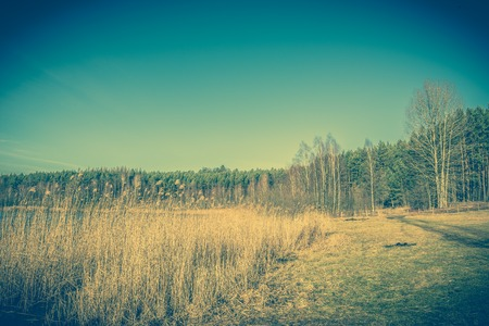 Landscape of natural environment in wild scenery over lake with grass on the shore Stock Photo