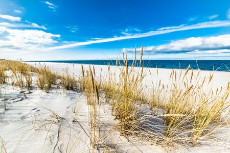 Sea beach landscape and blue sky. Sand dune with grass, Leba, Baltic Sea, Poland 写真素材