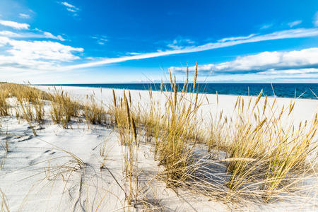 Sea beach landscape and blue sky. Sand dune with grass, Leba, Baltic Sea, Poland Standard-Bild
