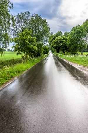 Wet road after rain in countryside scenery of fields, rural landscape Reklamní fotografie