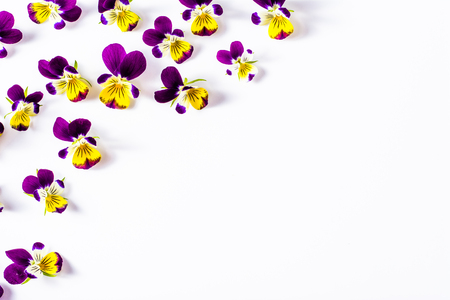Floral frame with beautiful violets flowers selected on white background Stock Photo - 74580167