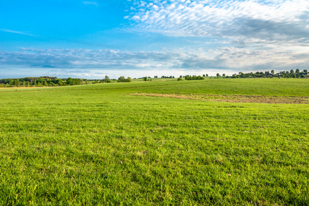 Green field, landscape of meadow with grass and blue sky in spring Stock Photo