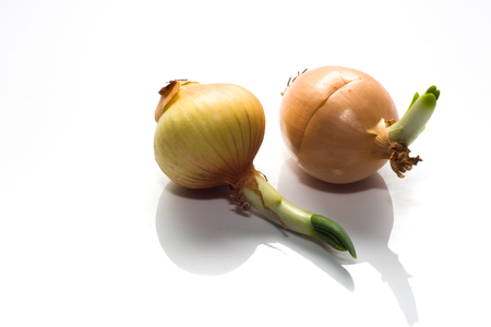 Two onions isolated on white background Stock Photo