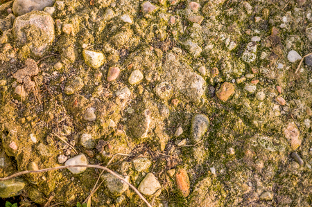 Old pebble stone paving, texture