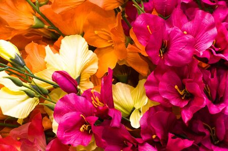 Mothers day flowers, background with gladioli petals close-up Stock Photo