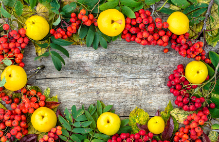 Colorful autumn frame with autumn fruits on wooden background, fall wallpaper