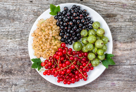 Summer fruits varieties: red currants, white currants and blackcurrants on plate, top view Imagens