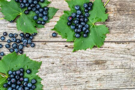 Fresh blueberries on wooden table, bilberry fruits frame, copy space from above