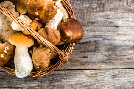 바구니, 가을 시즌에 수확하는 숲에서 boletus에서에서 신선한 버섯
