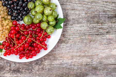 Summer fruits varieties: red currants, white currants and blackcurrants on plate, top view Stok Fotoğraf