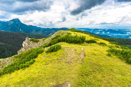 Montañas de Tatra, paisaje de primavera con pico de montaña cubierto de hierba verde fresca Foto de archivo - 76597192