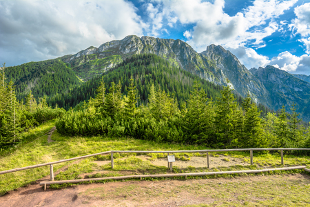 Panorama of mountains, view of Giewont in Tatra Mountains, summer, landscape, Poland