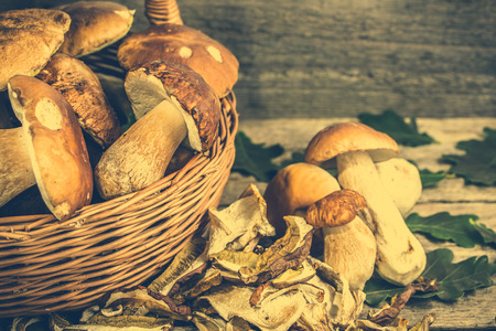Dry mushrooms and fresh boletus mushroom in a basket on rustic wooden background