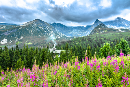 Idyllic mountain land with countryside scene, mountain hut in the forest, summer landscape