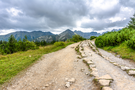 Hiking trail in mountains, landscape, Tatra National Park, Poland Фото со стока
