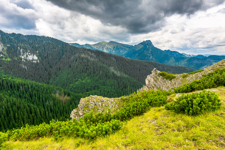Landscape of mountains covered forest, view from summit at the edge of precipice Фото со стока
