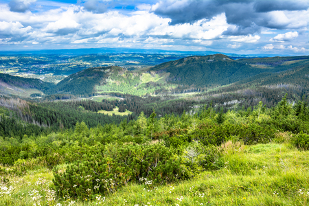Panorama of city in mountains, spring landscape with blue sky and pine forest Stock fotó