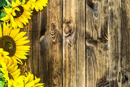 木製の背景、秋の花にひまわり 写真素材
