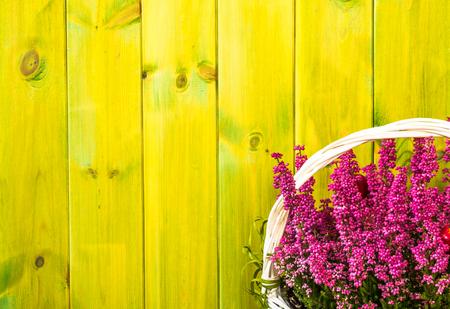 Bloem van heather in de mand, de herfstbloemenachtergrond, sjofel elegant rustiek patroon