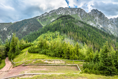 Panoramic vista of mountains. Landscape with rocky mountain, mount Giewont and forest around hiking trail