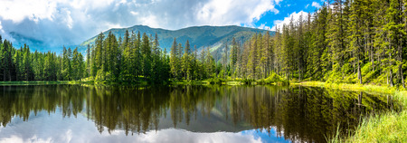 Mountain lake in the forest, Tatra Mountains, National Park in Poland, summer landscape 스톡 콘텐츠