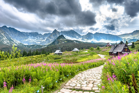 Mountain hiking trail in Tatra Mountains, summer landscape
