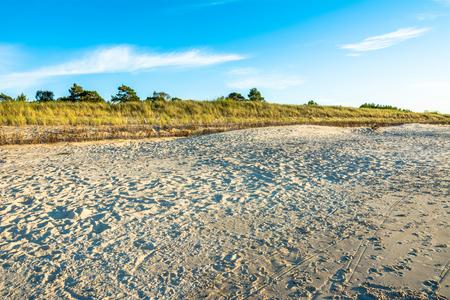 Sandy beach under blue sky, summer background
