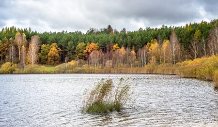 Lake landscape and autumn forest with colorful trees Stock Photo