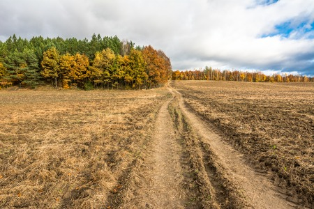 Dirt road through farmland and plowed field in autumn, landscape