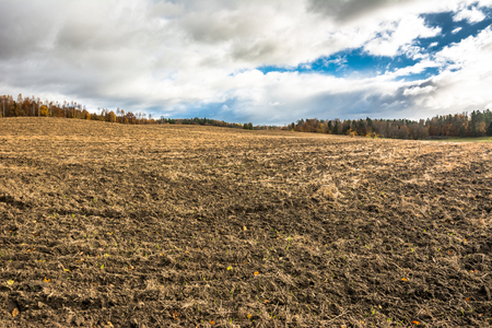 Landscape of autumn field and plowed ground on farmland, agricultural scenery in polish countryside